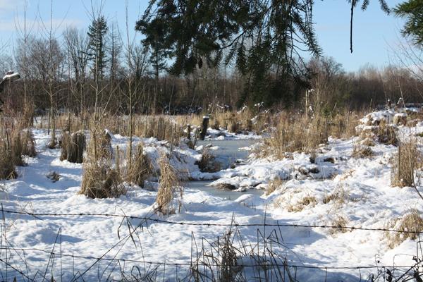 winterheadwaters_600f2f