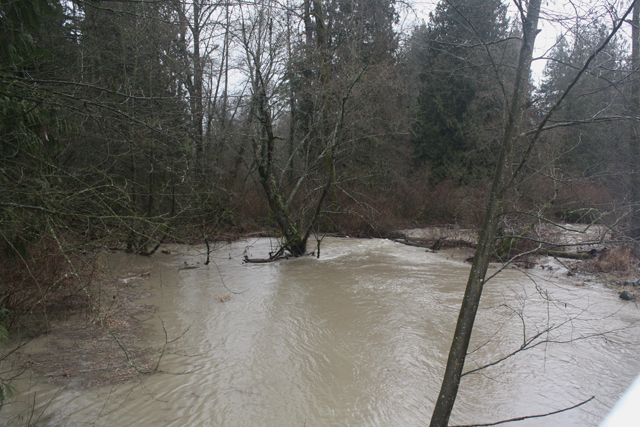 Salmon River (248th St.), Jan. 11, 2014