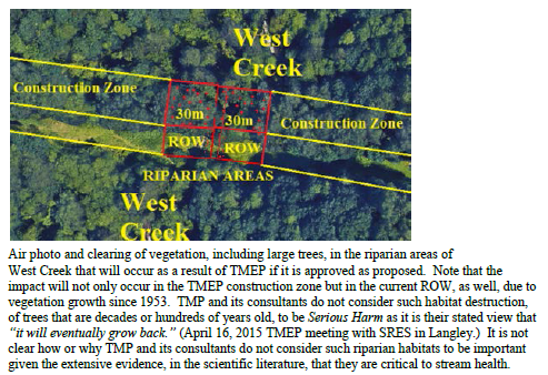 west-creek-clearing-proposal-apr-2015